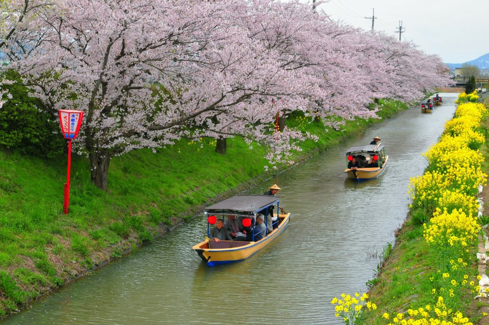 Oumihachiman Canal District Tour
