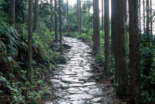 World Heritage Site Kumano Kodo